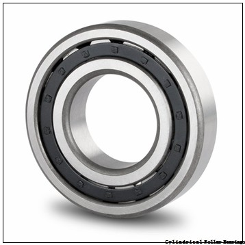 50 x 5.118 Inch   130 Millimeter x 1.22 Inch   31 Millimeter  NSK NJ410W  Cylindrical Roller Bearings