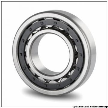15 mm x 35 mm x 11 mm  FAG NJ202-E-TVP2  Cylindrical Roller Bearings