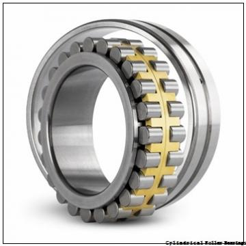 8.661 Inch | 220 Millimeter x 15.748 Inch | 400 Millimeter x 2.559 Inch | 65 Millimeter  NSK NUP244M  Cylindrical Roller Bearings